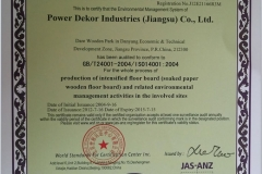 ISO 14001 2004 by WSF